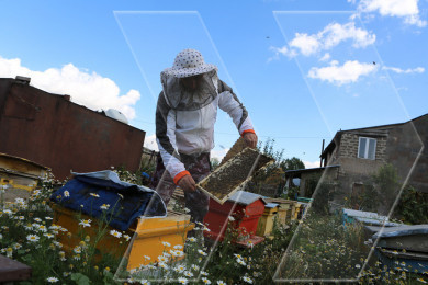 The beekeeper and his family in Gorayk village of Armenia
