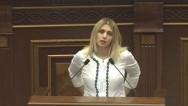 Элинар Варданян перечислила минусы проекта нового Избирательного кодекса РА