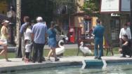 Ереванское лето