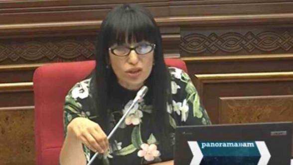 Наира Зограбян: Кроите свое правительство как хотите